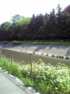 境川CYCLING Course