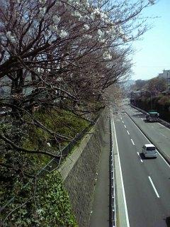 ♪長い坂道は♪
