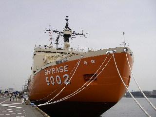 Imgp0344