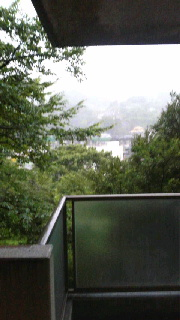 伊東で台風