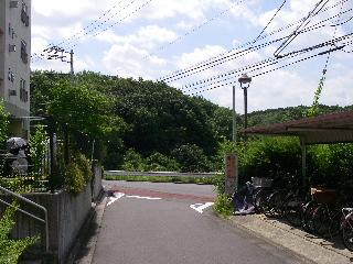 Imgp0636