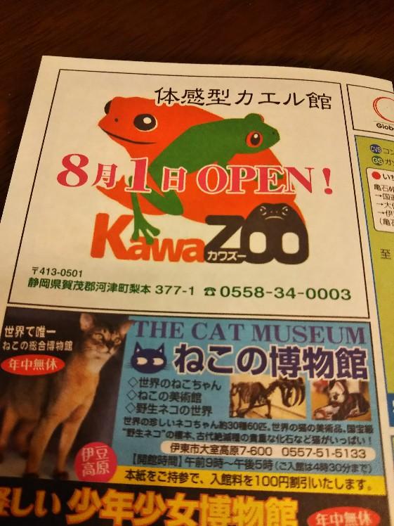 カエルの博物館!